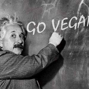 Вегетарианцы знаменитости