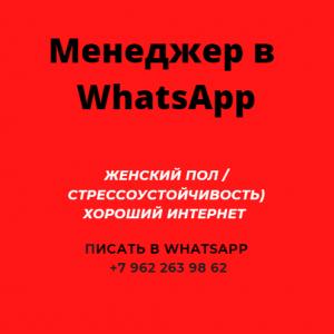 Менеджер WhatsApp (дистанционно)